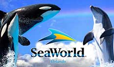 SeaWorld Adventure Park