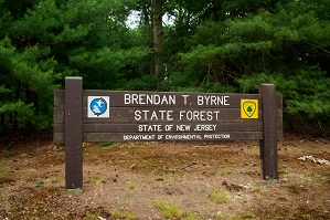 Brendan T. Bryne State Forest