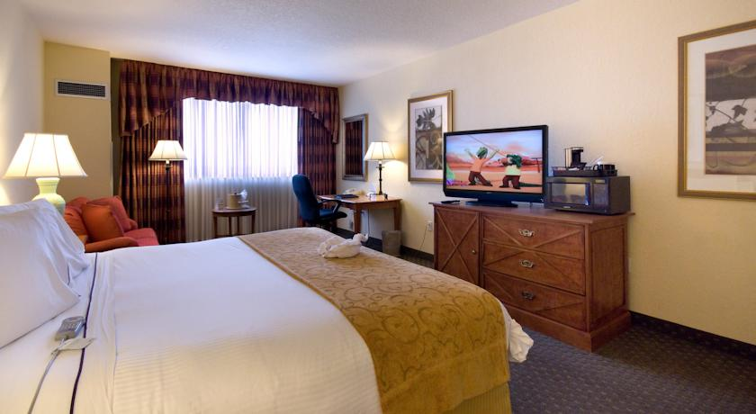 Allure Resort International Drive Orlando - Single Room