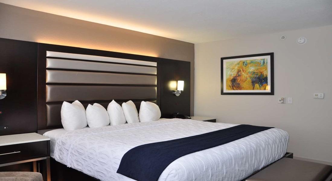 Best Western Premier Jacksonville - Single Bed