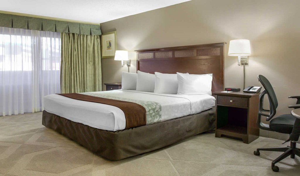Clarion Hotel Orlando International Airport - Single Bed