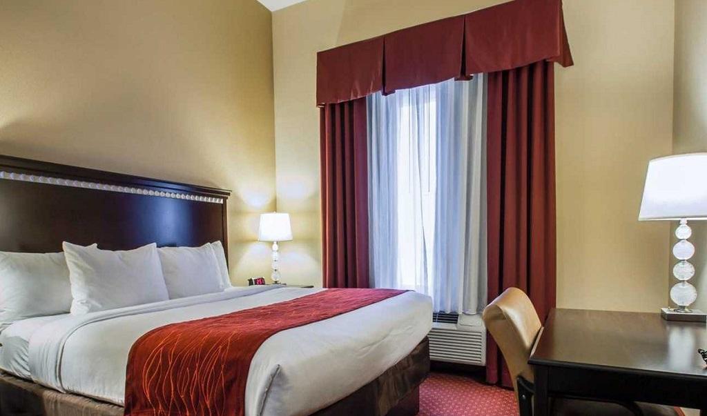 Comfort Inn & Suites Maingate South - Single Bed