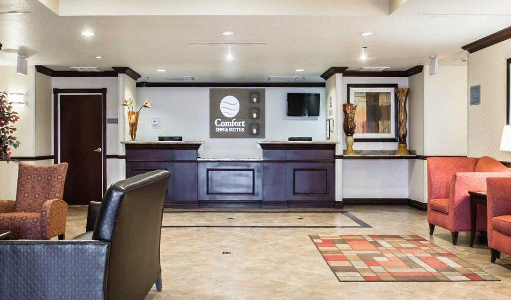 Comfort Inn & Suites Maingate South - Lobby