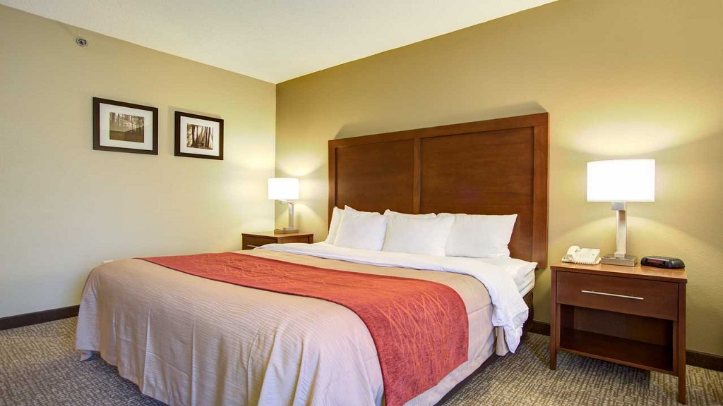Comfort Inn Blythewood - Single Bed Room