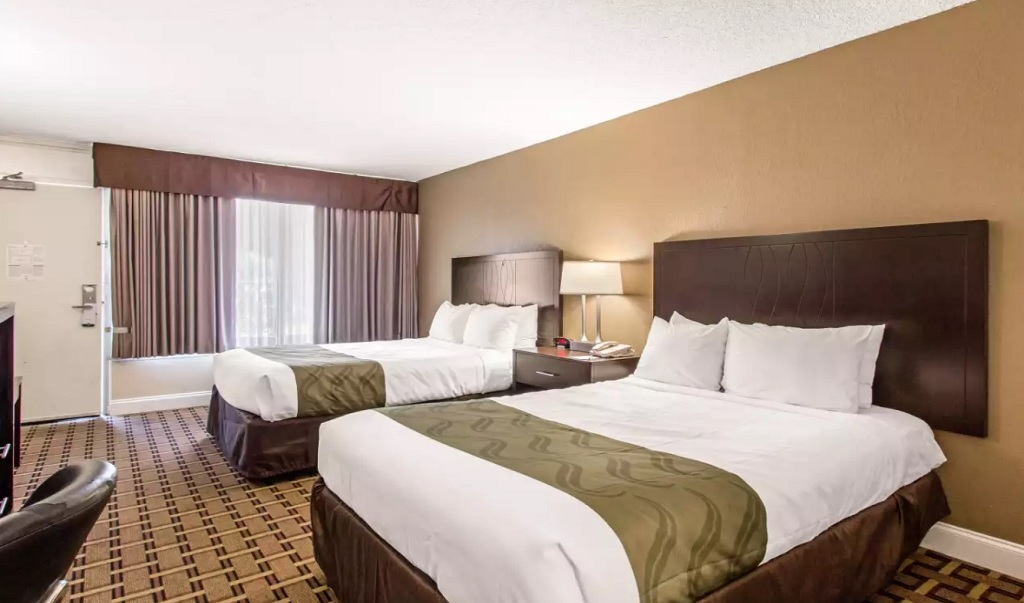 Quality Inn & Conference Center Tampa - Double Beds Room