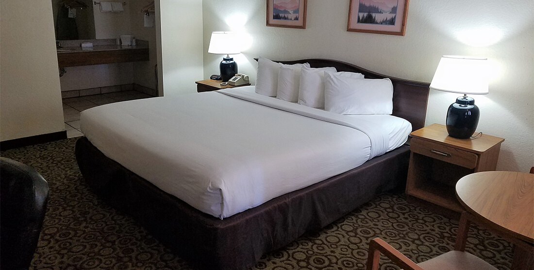 Red Roof Inn Albuquerque - Single Bed