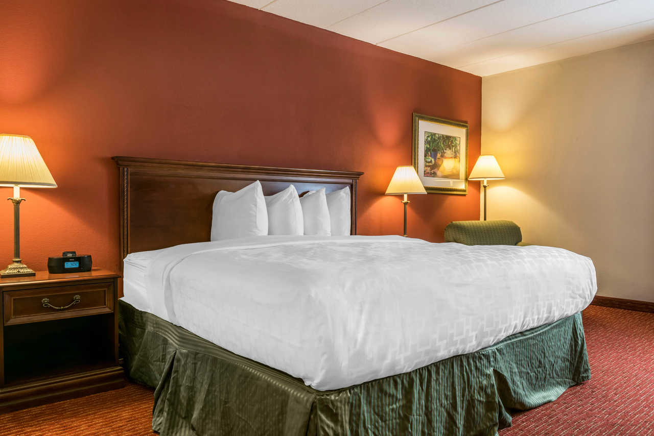 Clarion Hotel Indianapolis Airport - Single Bed-1