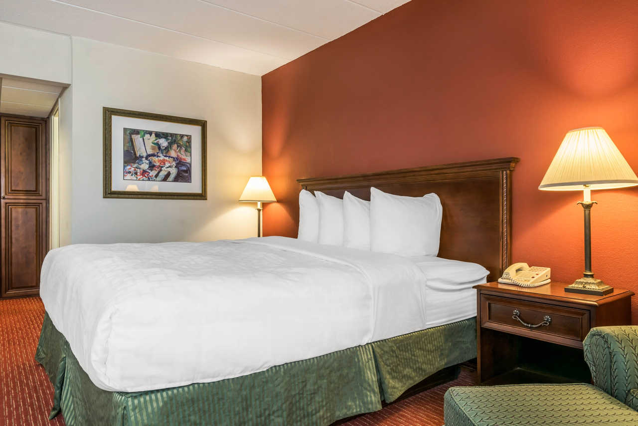 Clarion Hotel Indianapolis Airport - Single Bed-2