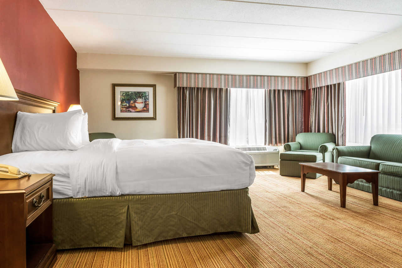 Clarion Hotel Indianapolis Airport - Single Bed with Sofa-2