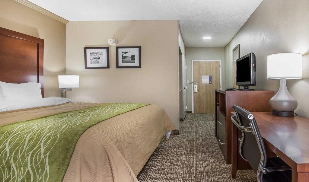 Comfort Inn Jackson - Single Bed Room-2
