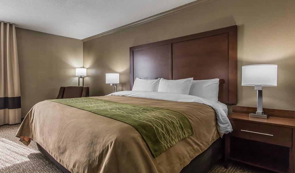 Comfort Inn Jackson - Single Bed Room-1