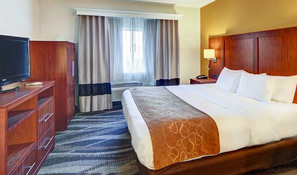 Comfort Suites Longview North - Single Bed Room2