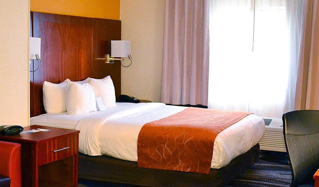 Comfort Suites Longview North - Single Bed Room