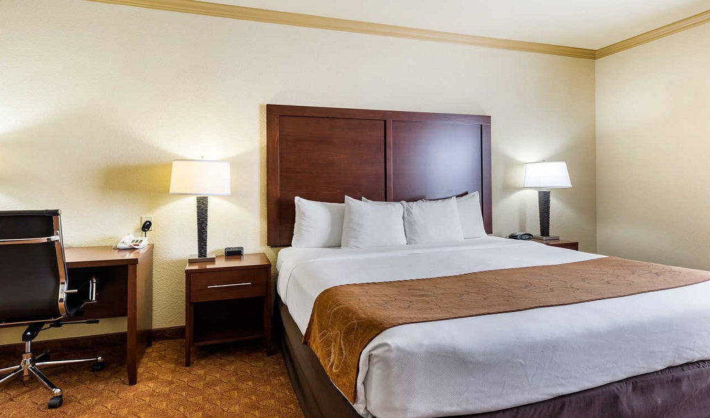 Comfort Suites Near NASA - Single Bed Room2