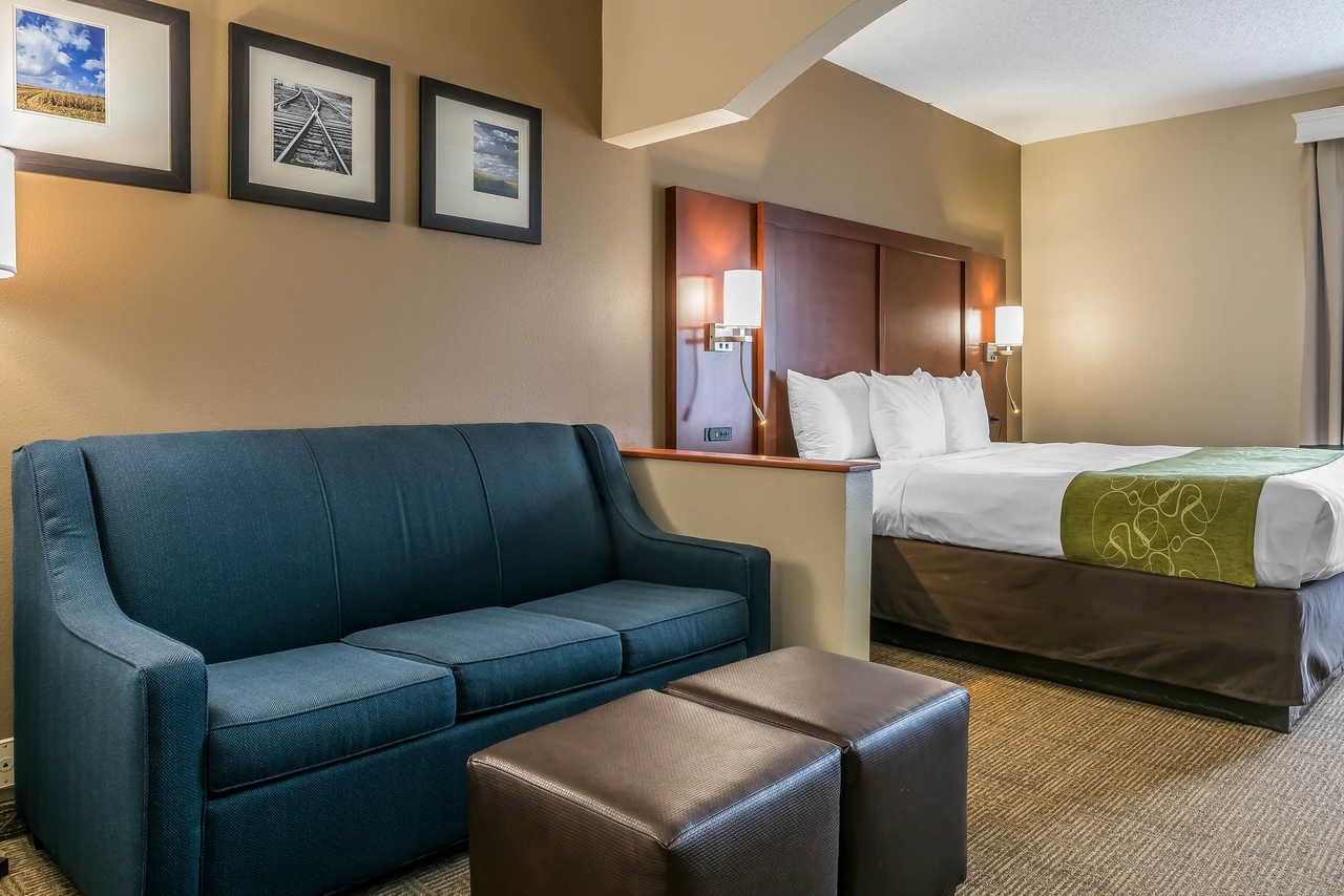 Comfort Suites Springfield - Single Bed-1