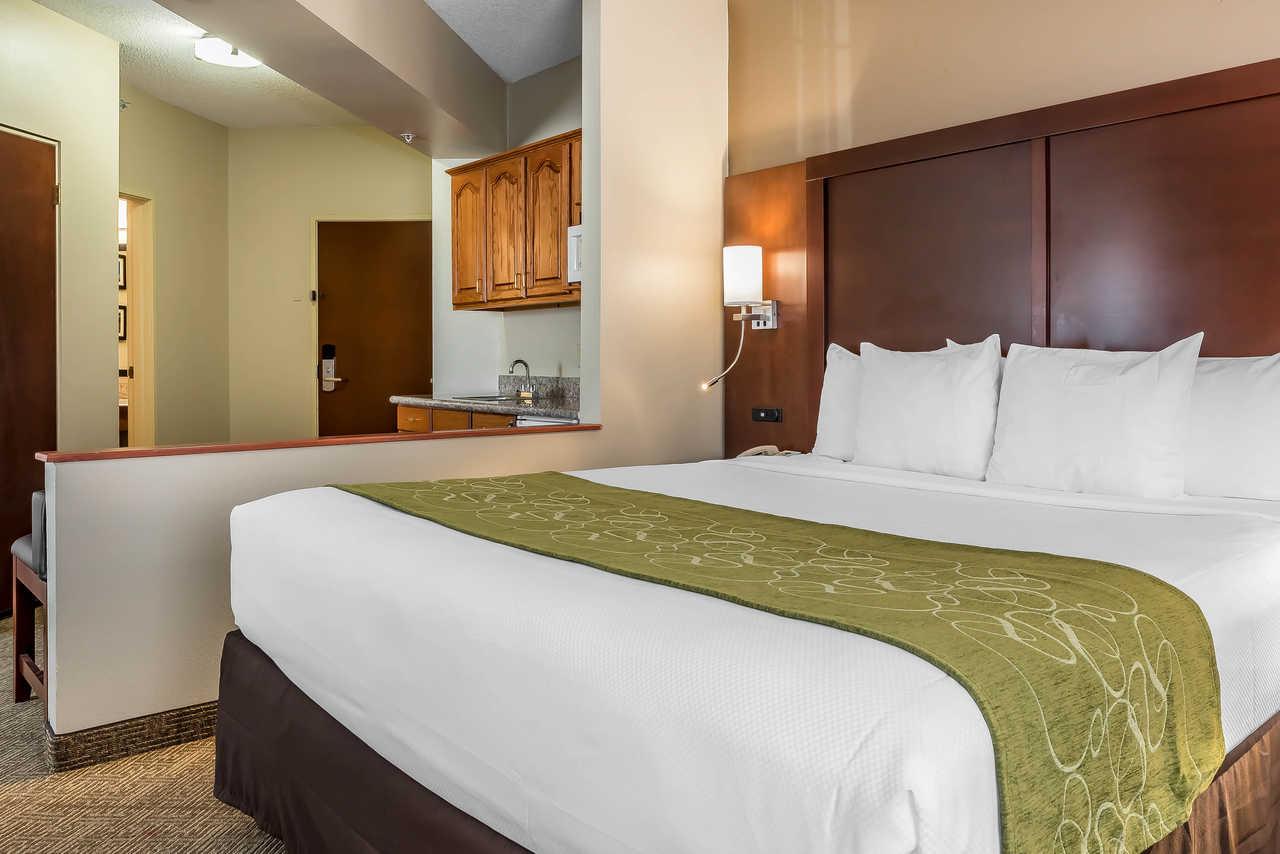 Comfort Suites Springfield - Single Bed-3