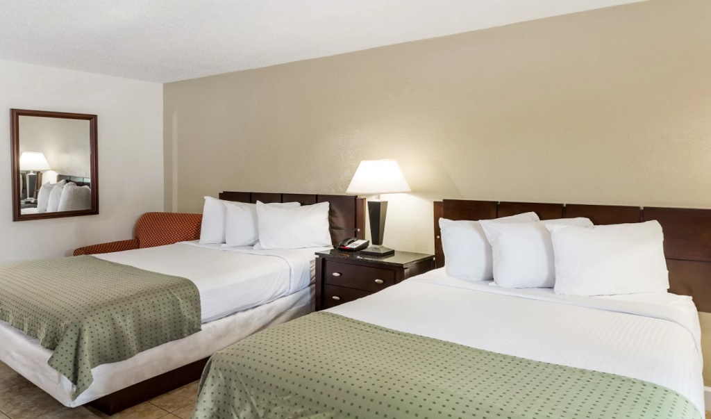 Days Inn St. Petersburg North - Double Beds Room-1
