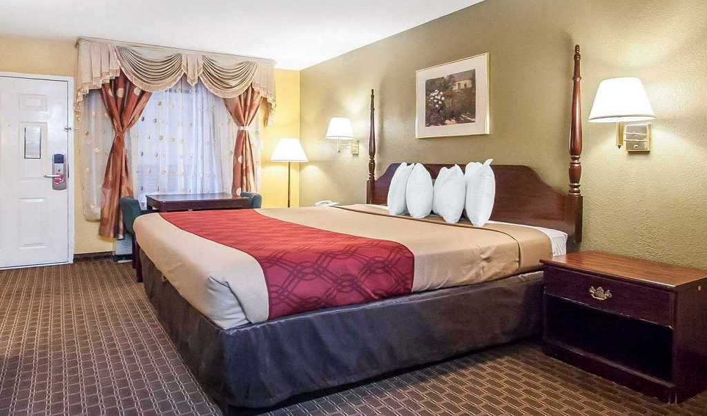 Econo Lodge Inn & Suites Murfreesboro - Single Bed-3