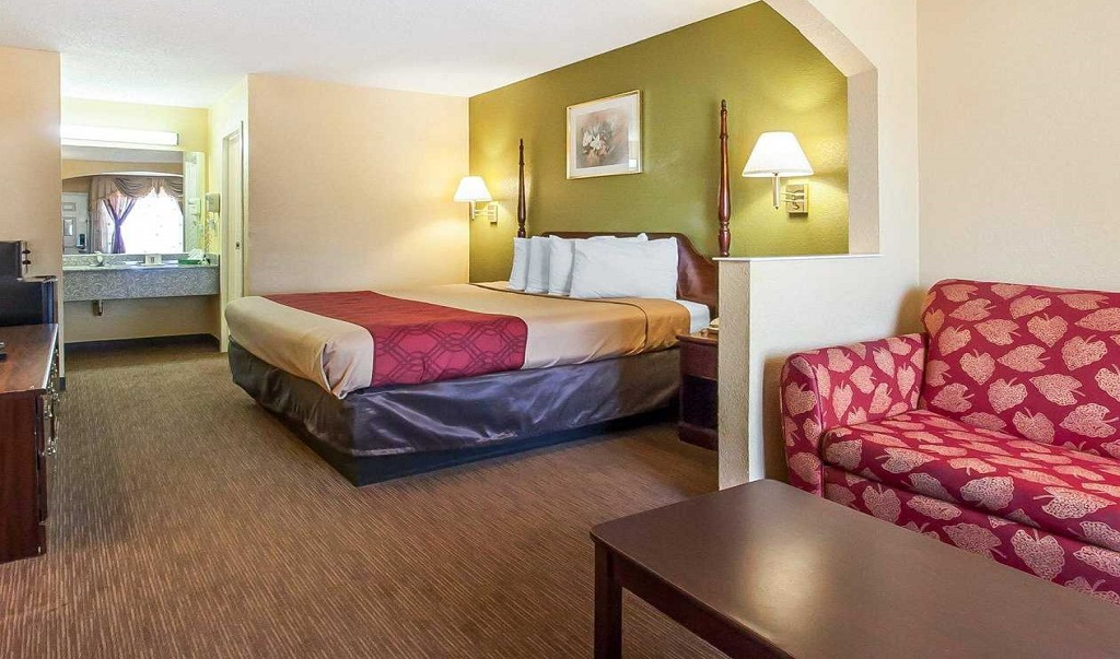 Econo Lodge Inn & Suites Murfreesboro - Single Bed-1