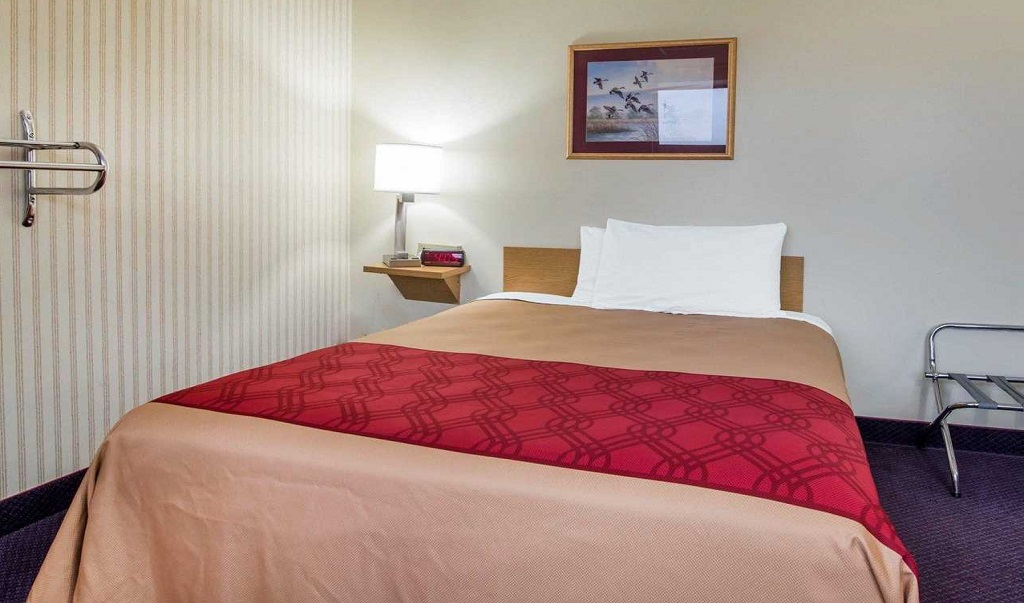 Econo Lodge Manchester - Single Bed Room-1