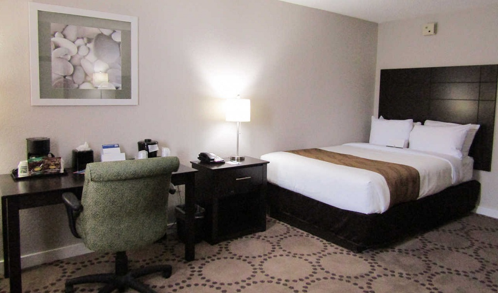 Quality Inn & Suites Kissimmee by The Lake - Single Bed-2