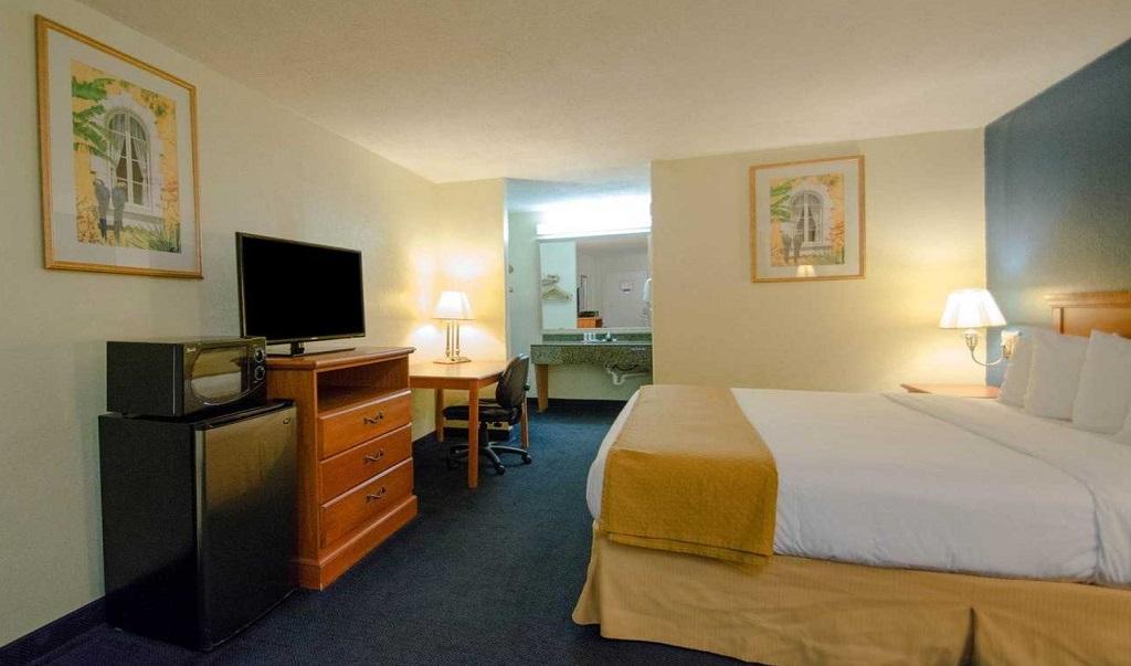 Quality Inn Sarasota North - Single Bed-2