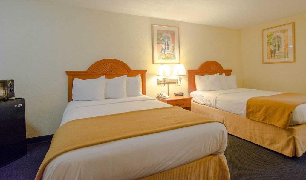 Quality Inn Sarasota North - Double Beds-1