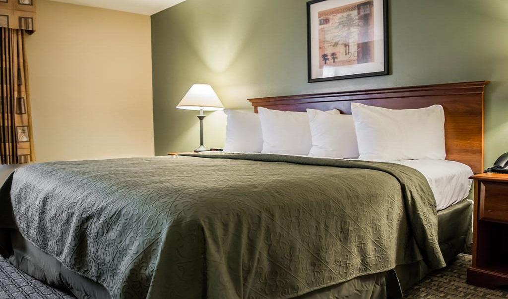 Quality Inn Ybor City - Single Bed-2