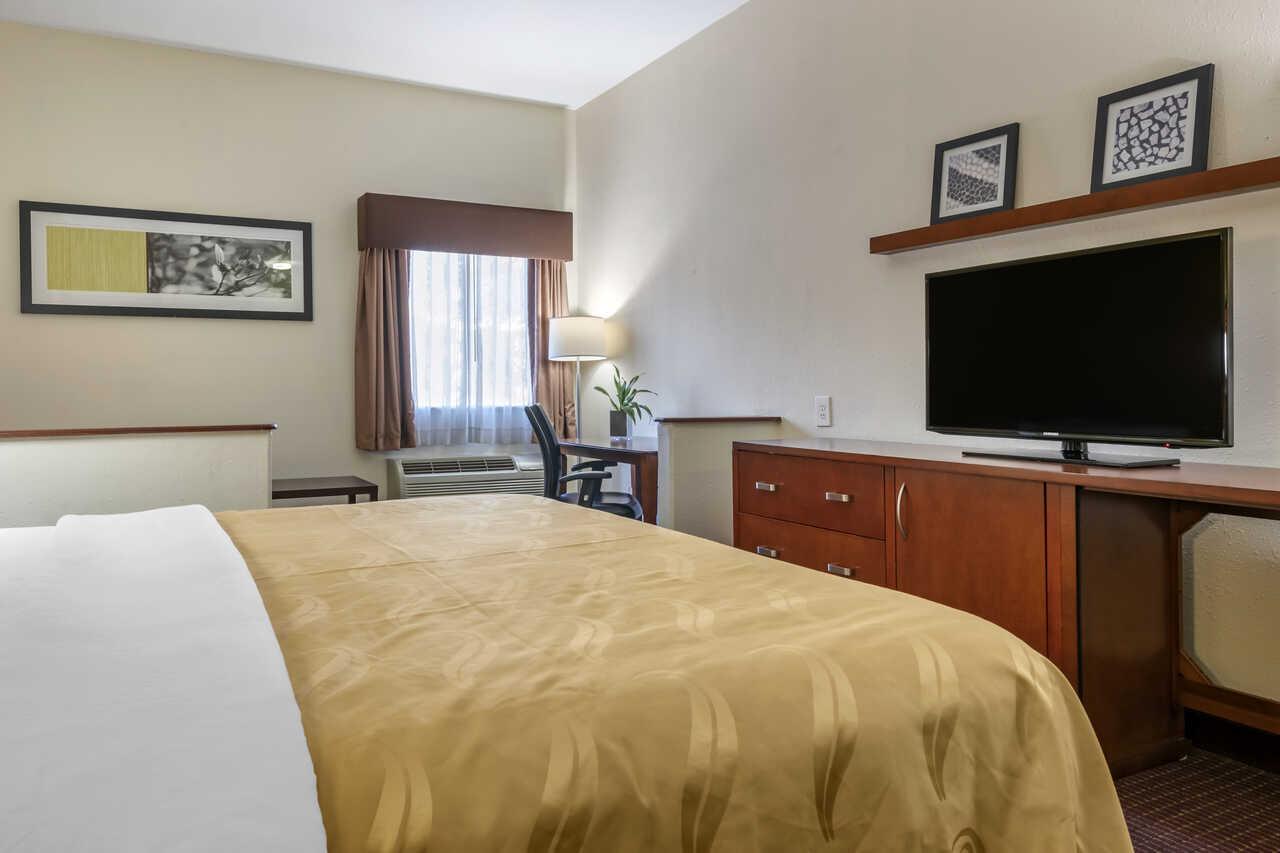 Quality Inn Zephyrhills - Single Bed Room-2