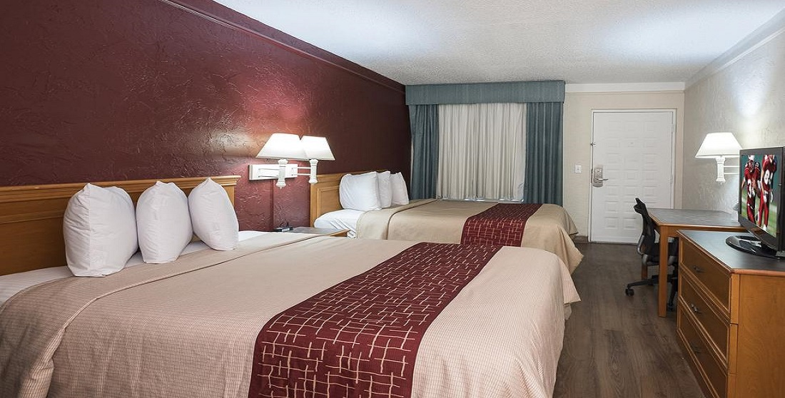 Red Roof Inn Tampa Bay - Double Beds-1