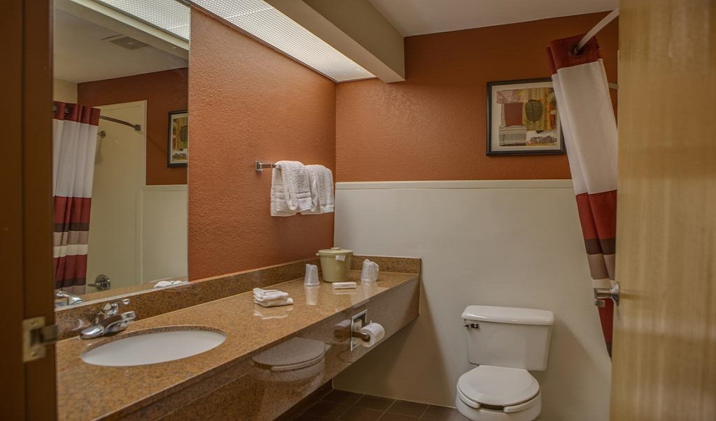 Red Roof Inn Pharr/McAllen - Room Bathroom