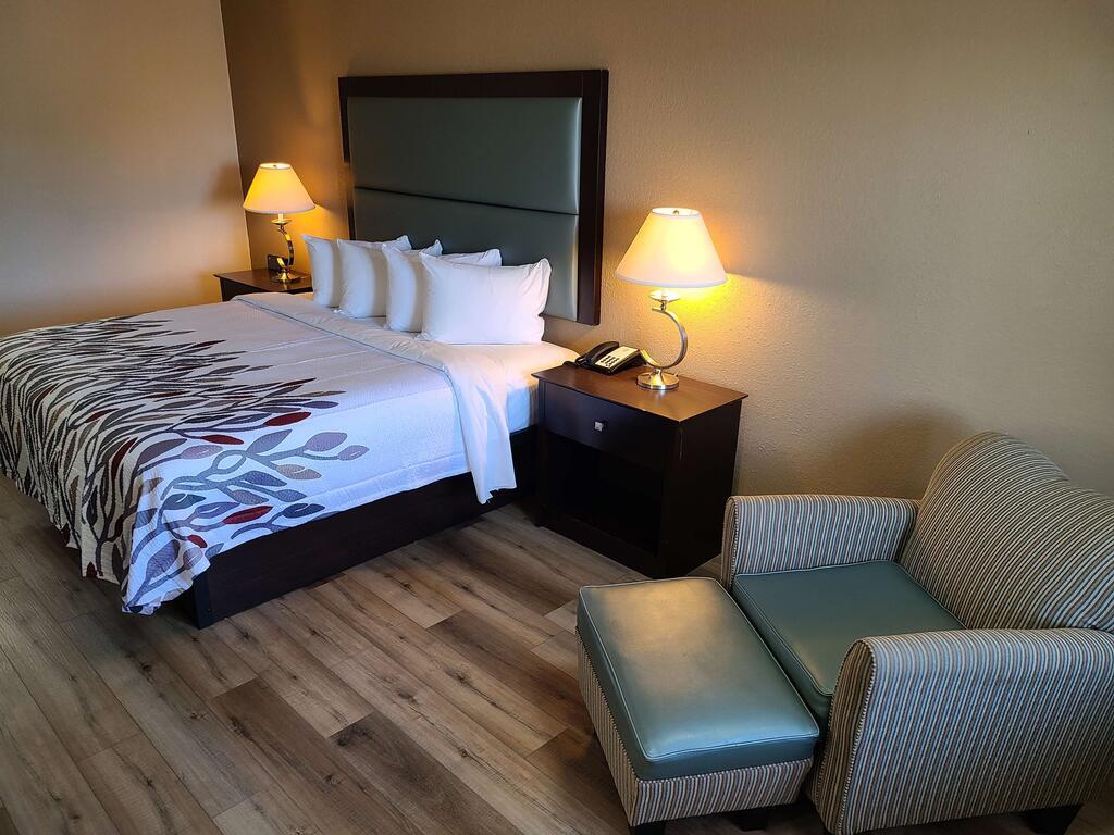 Red Roof Inn Staunton - Single Bed Room-3