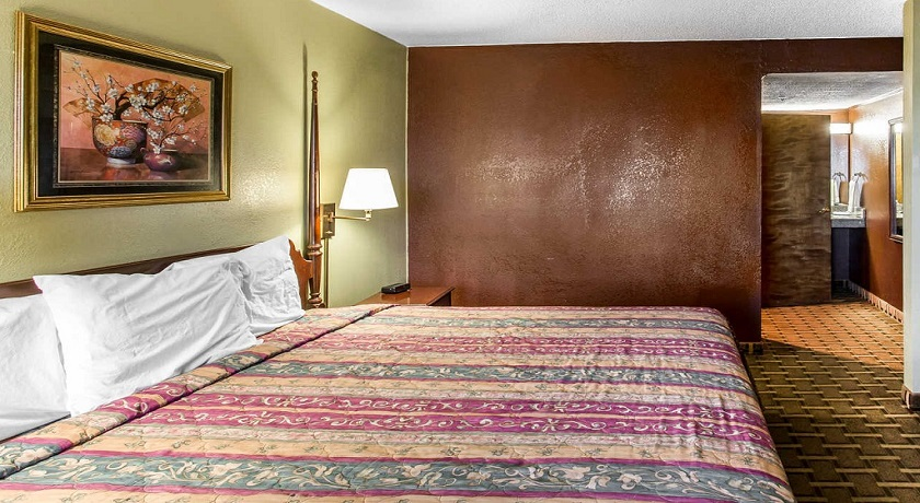 Rodeway Inn & Suites Smyrna - Single Bed-3