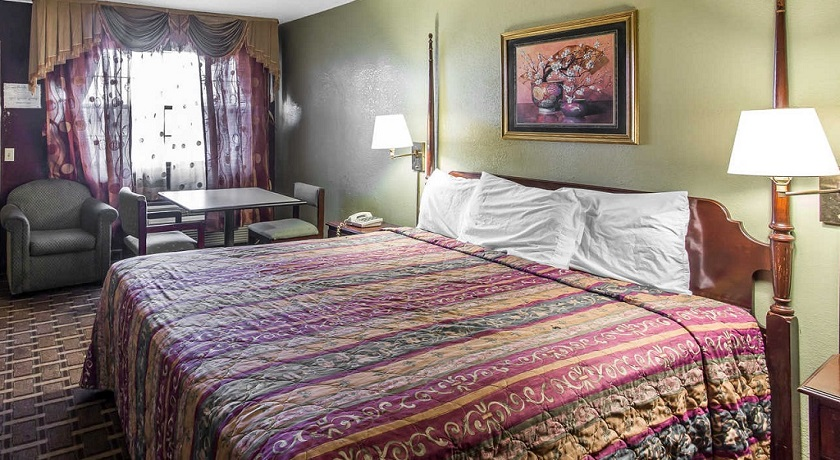 Rodeway Inn & Suites Smyrna - Single Bed-4