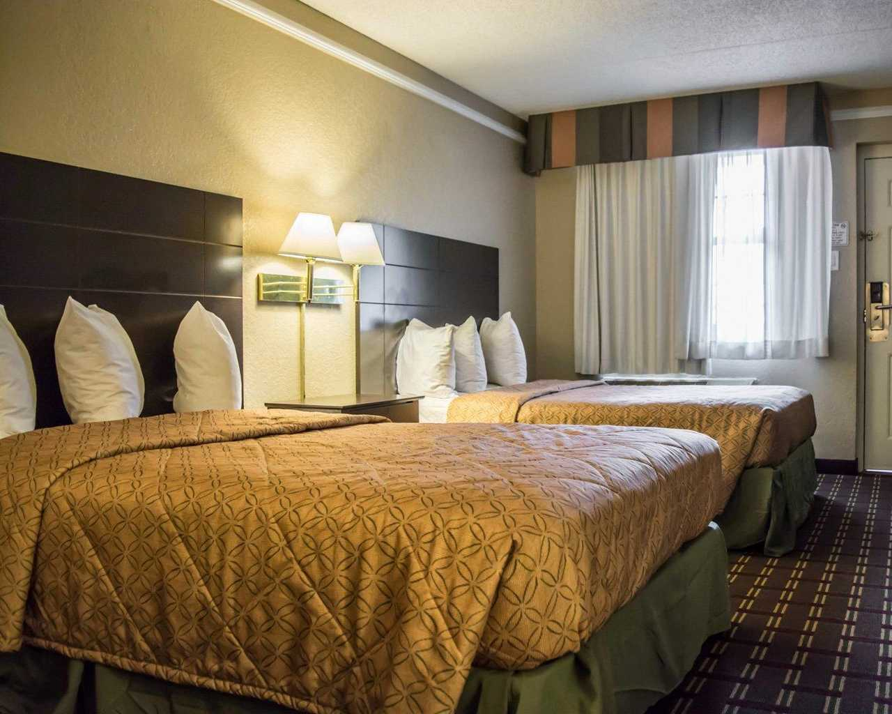 Rodeway Inn & Suites Tampa - Double Beds-1