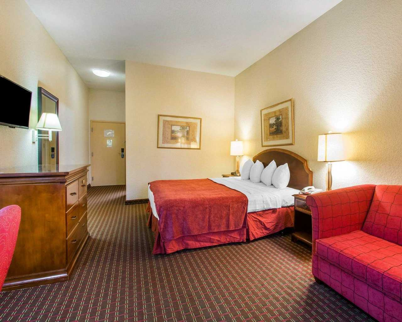 Rodeway Inn Wesley Chapel - Single Bed-1
