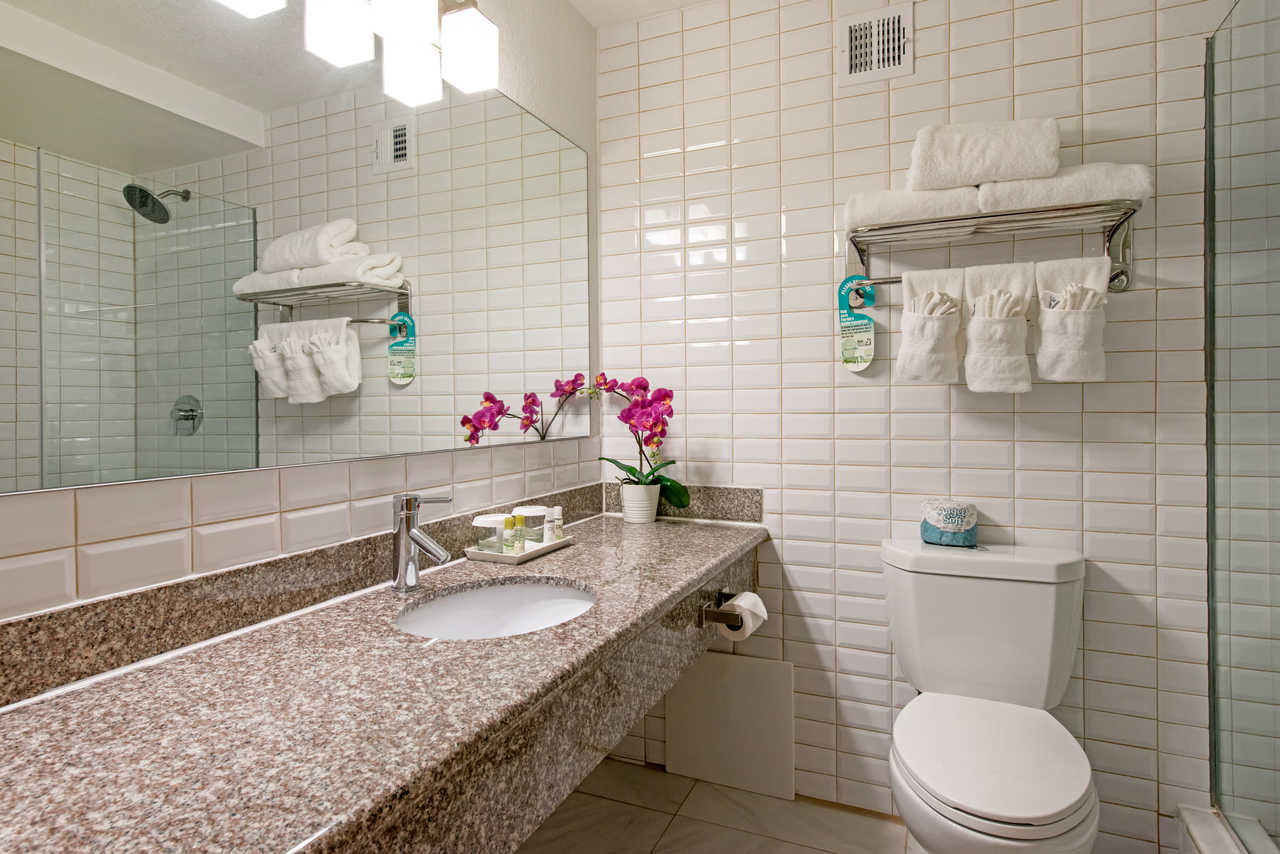 West Wing Boutique Hotel - Ascend Hotel Collection - Bathroom
